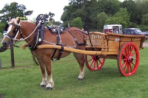 Hire a horse drawn carriage