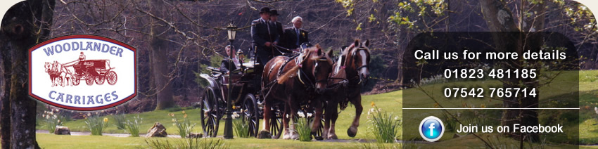 Woodlander Carriages Horse and Carriage Hire Somerset